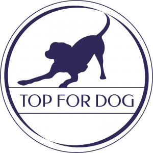 TOP FOR DOG